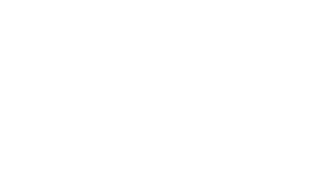 The Icon